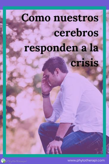 SPAN Crisis Blog Cover