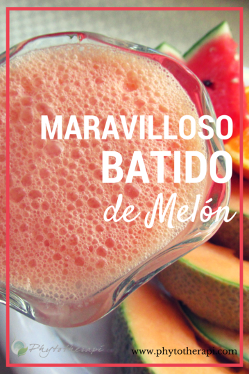 Wonderful Melon Smoothie-SPANISH
