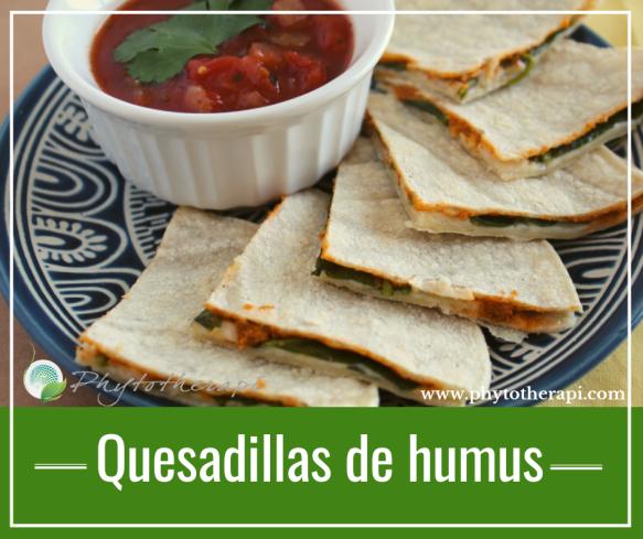 SPAN Hummus Quesadillas.png