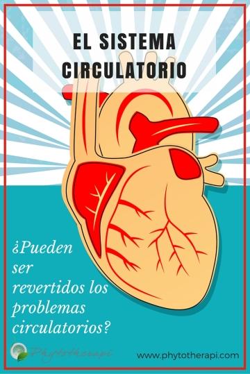 CIRCULATION PROBLEMS-SPANISH