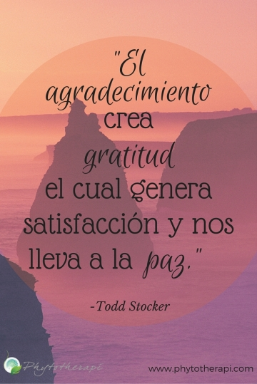 """Thankfulness creates gratitude.--LARGE, SPANISH"