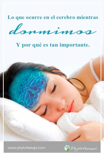 Sleep brain esp