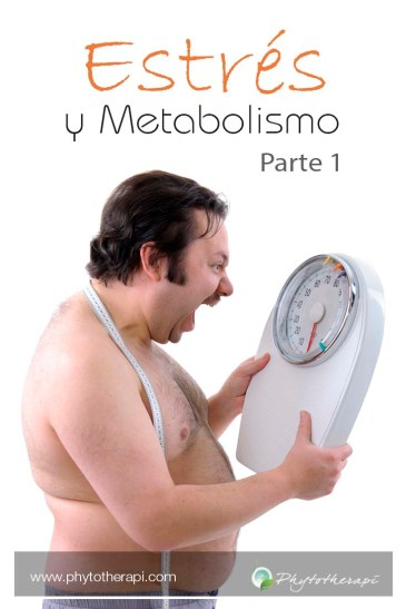 Stress and Metab prt 2