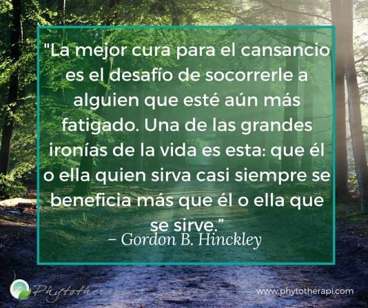 Hinckley Span.jpg