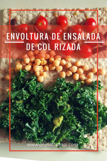 Kale Salad wrap-Spanish