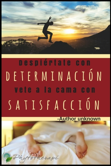 determinación