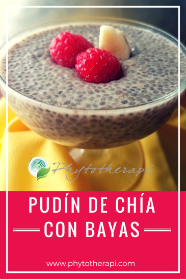 Chia pudding-SPANISH