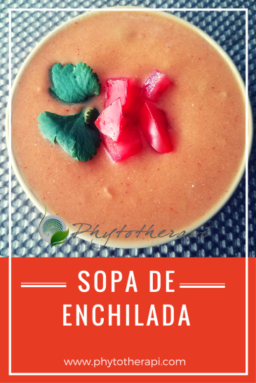 Enchilada soup-SPANISH