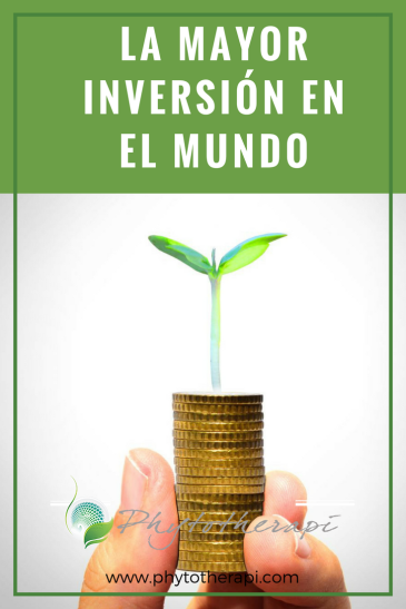 Investment Blog Cover-SPANISH.png