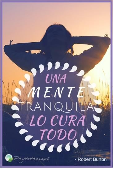 A quiet mind- Spanish