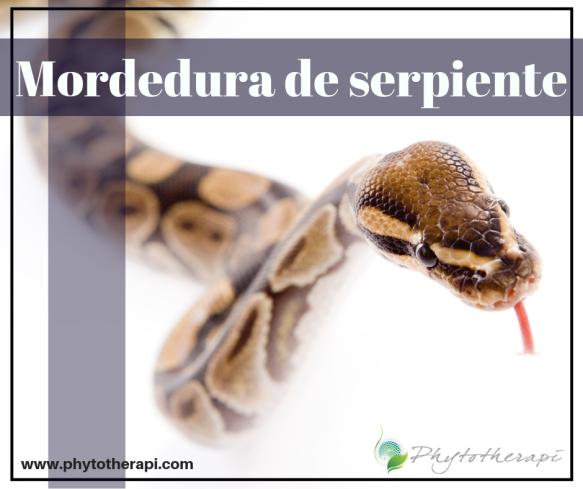 (SPAN)Snake Bite.png