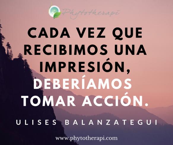 SPAN Impression.png
